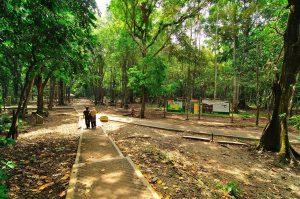4-Taman-Wisata-Alam-Cagar-Alam-Pananjung